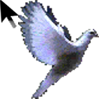 کد موس ایران - www.1cod.blogfa.com  تک کد